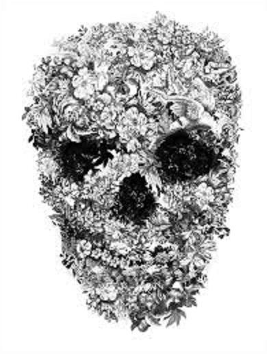 Skull-von-1
